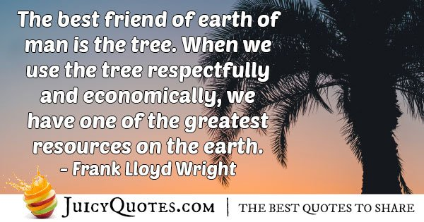 Protecting Our Trees Quote