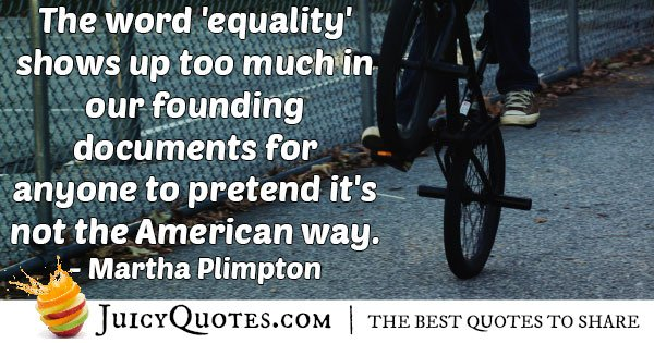 Equality in USA Quote