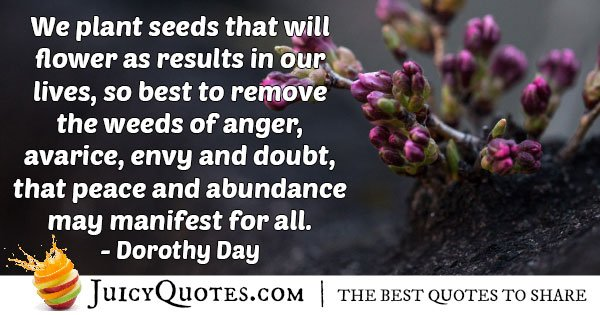 Seeds that will Flower Quote