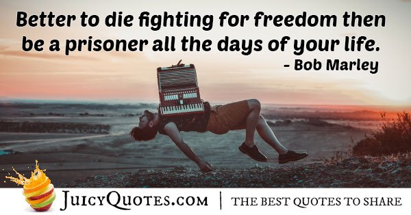 Fight for Freedom Quote