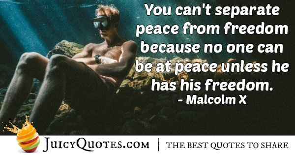 Peace and Freedom Quote