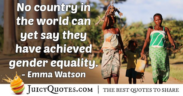 Gender Equality not Achieved Quote