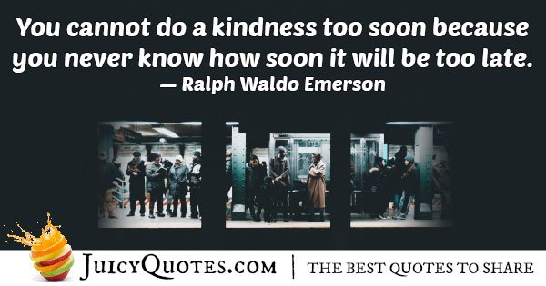 Generosity of Kindness Quote