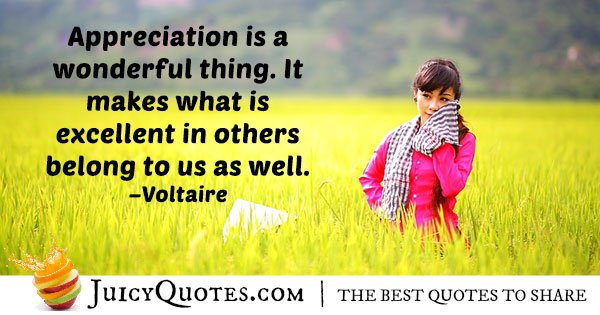 Appreciation is Wonderful Quote