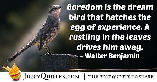 Boredom and Experience Quote