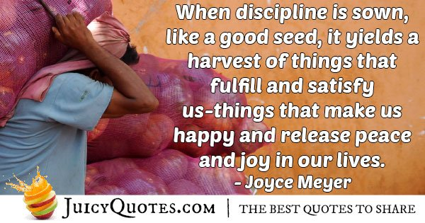 Discipline is Sown Quote