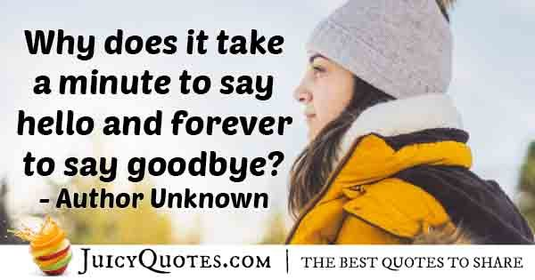 Forever to Say Goodbye Quote