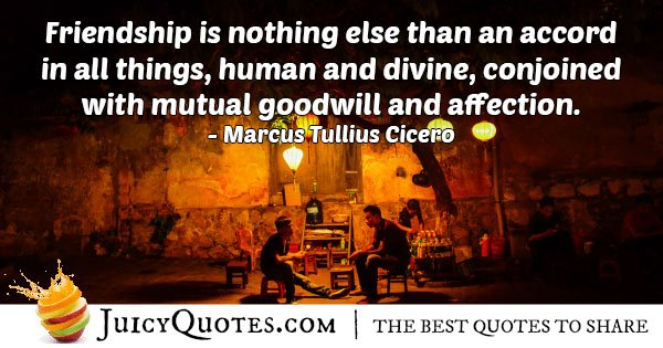 Goodwill and Affection Quote