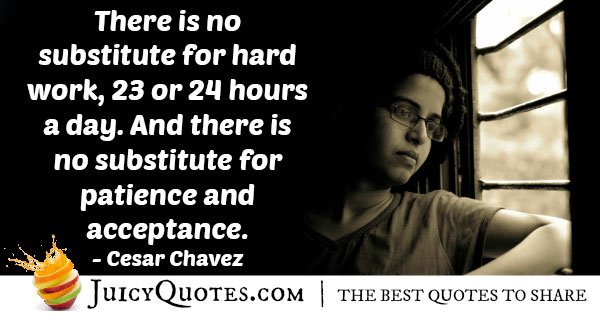 No Substitute For Hard Work Quote