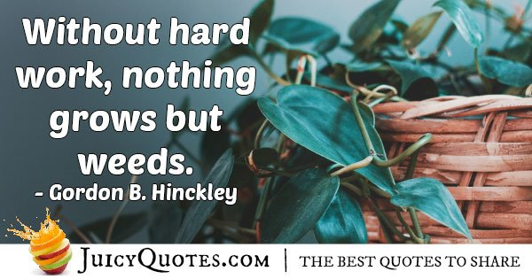 Without Hard Work Quote