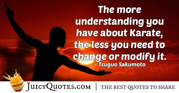 Understanding Karate Quote