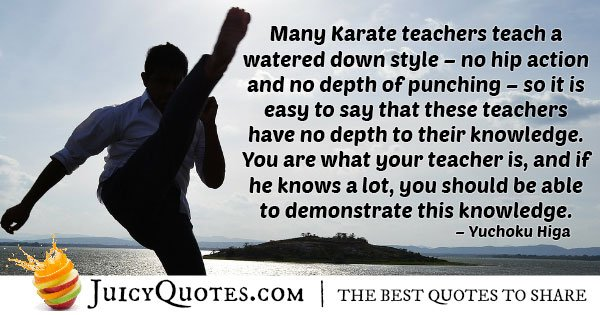 Karate Watered Down Quote