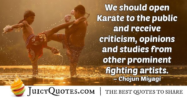 Karate To The Public Quote