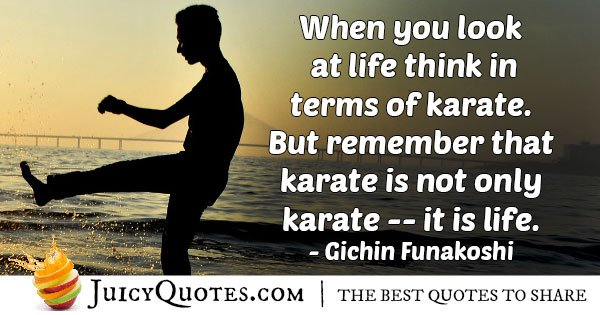 Karate is Life Quote