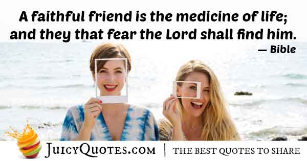 Friendship is Medicine Quote