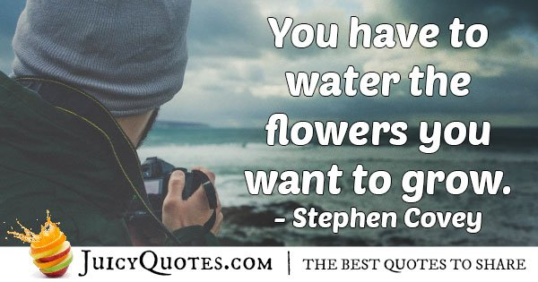 Mentors Water to Grow Quote
