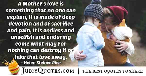 In-explainable Mother's Love Quote