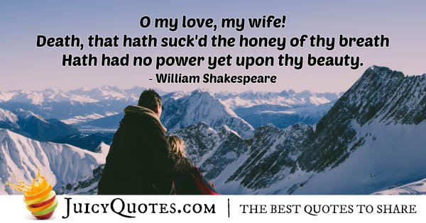 My Wife My Love Quote