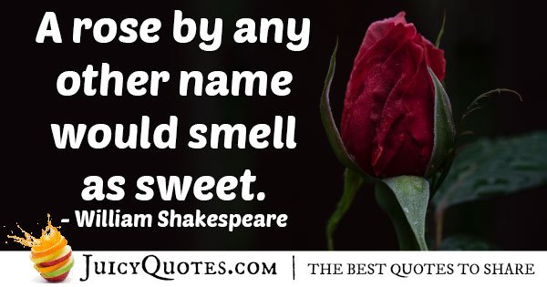 Famous Rose Quote