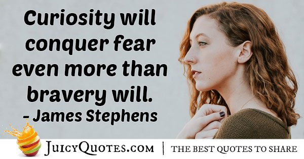 Fear And Curiosity Quote
