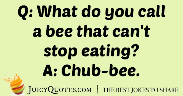 Silly Bee Pun