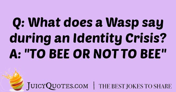 Silly Wasp Joke