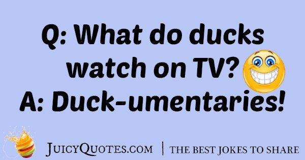 Duck Watching TV Joke