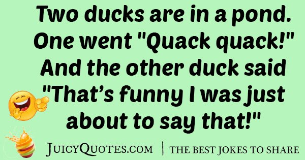 Duck in a Pond Joke