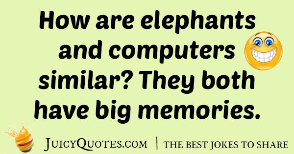 Elephant and Computer Joke