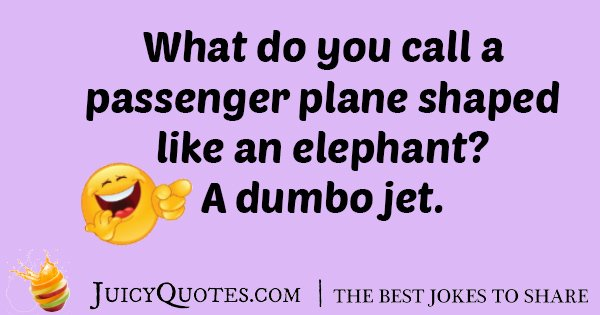 Elephant on Plane Joke