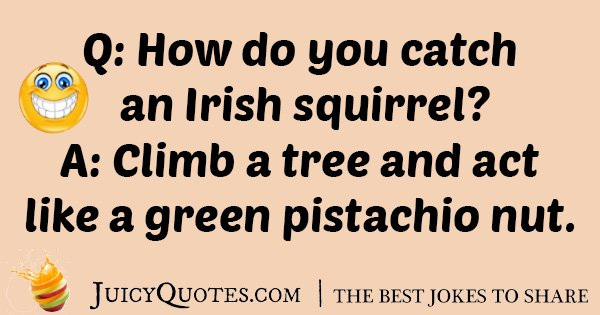 Irish Squirrel Joke