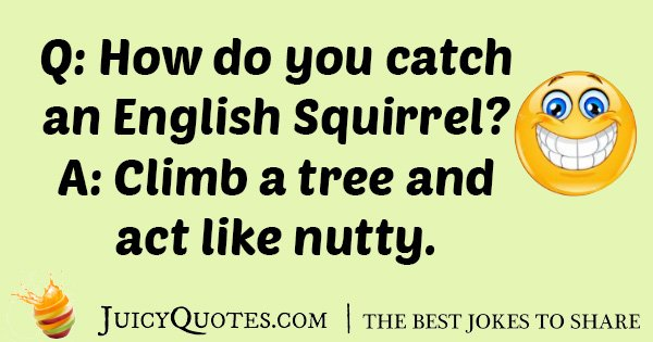 English Squirrel Joke