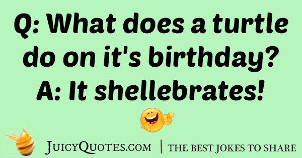 Turtle Birthday Joke