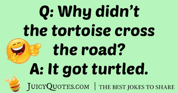 Road Tortoise Joke