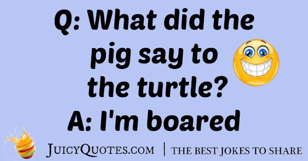 Pig and Turtle Joke