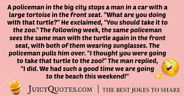 Turtle and Police Joke