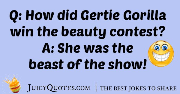 Gorilla Beauty Contest Joke