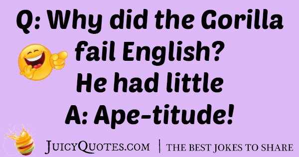 Gorilla Fail English Joke