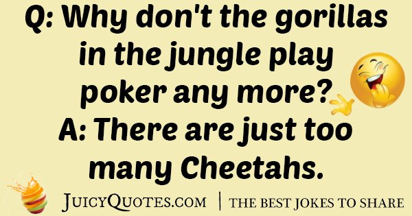 Gorilla Play Poker Joke