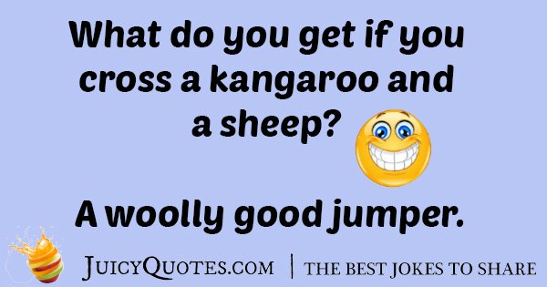Kangaroo And A Sheep Joke