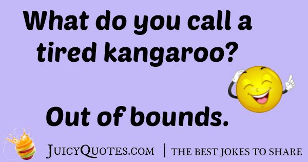 Tired Kangaroo Joke
