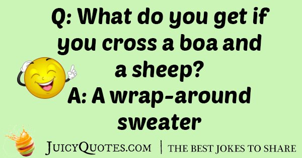 Lamb And Boa Joke