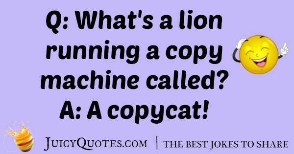 Copycat Lion Joke